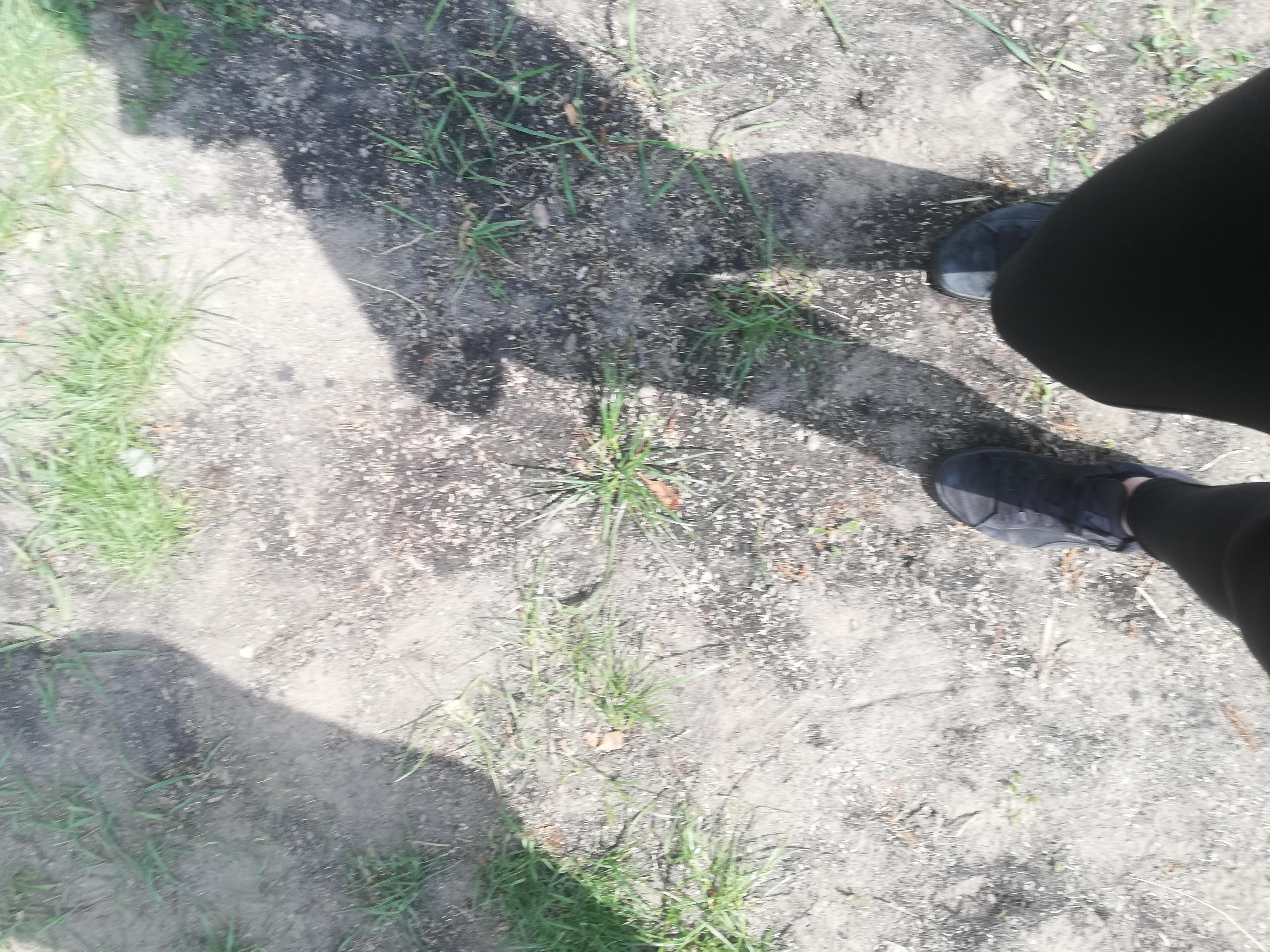 Na silnie rozjaśnionym światłem słonecznym trawiastym podłożu widać cień ludzkiej sylwetki.