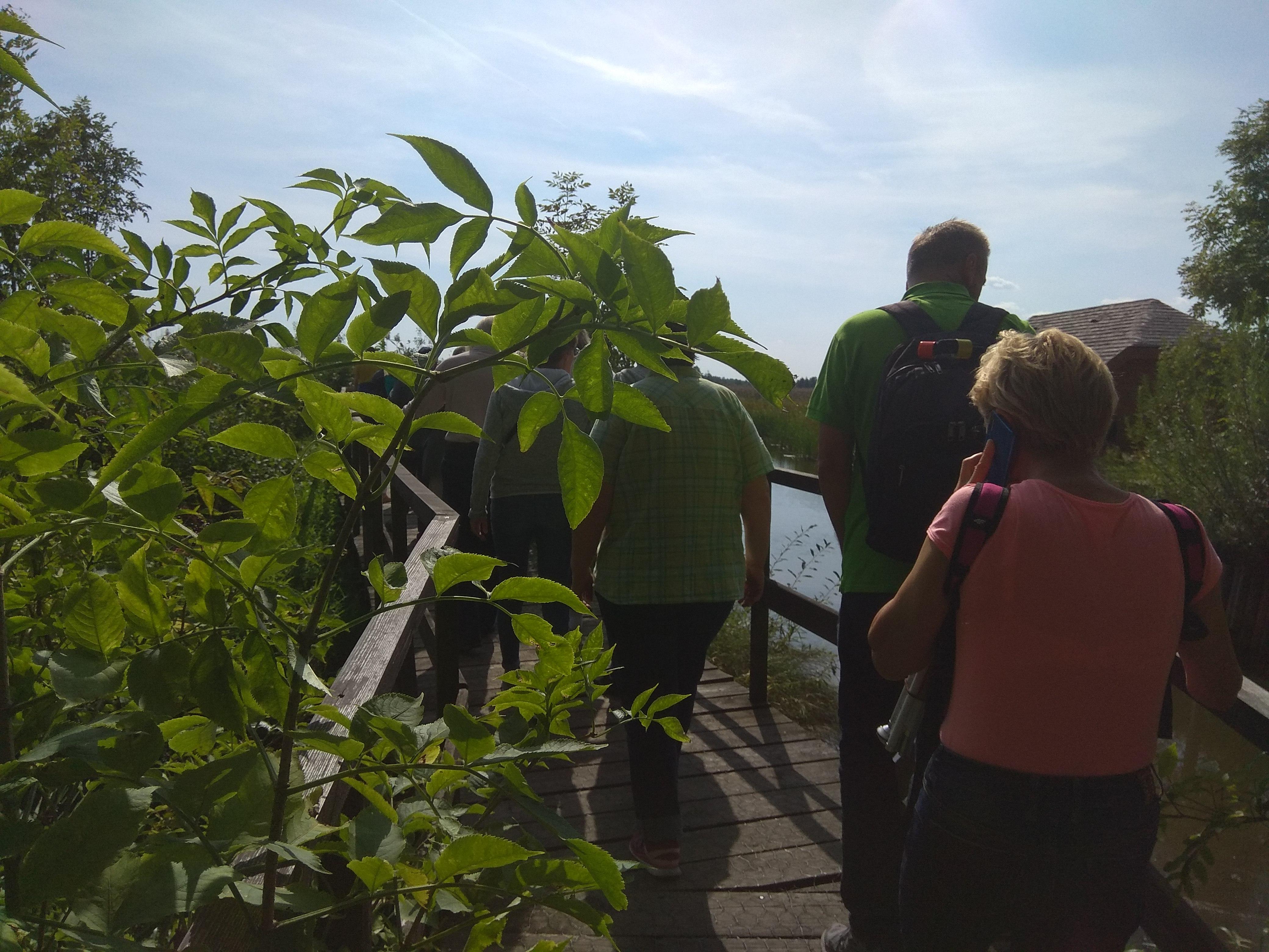 Troje zjazdowiczów na drewnianej kładce. Z lewej strony zbliżenie na wysoki krzew, soczyście zielony, z prawej strony kładki płynie Narew.