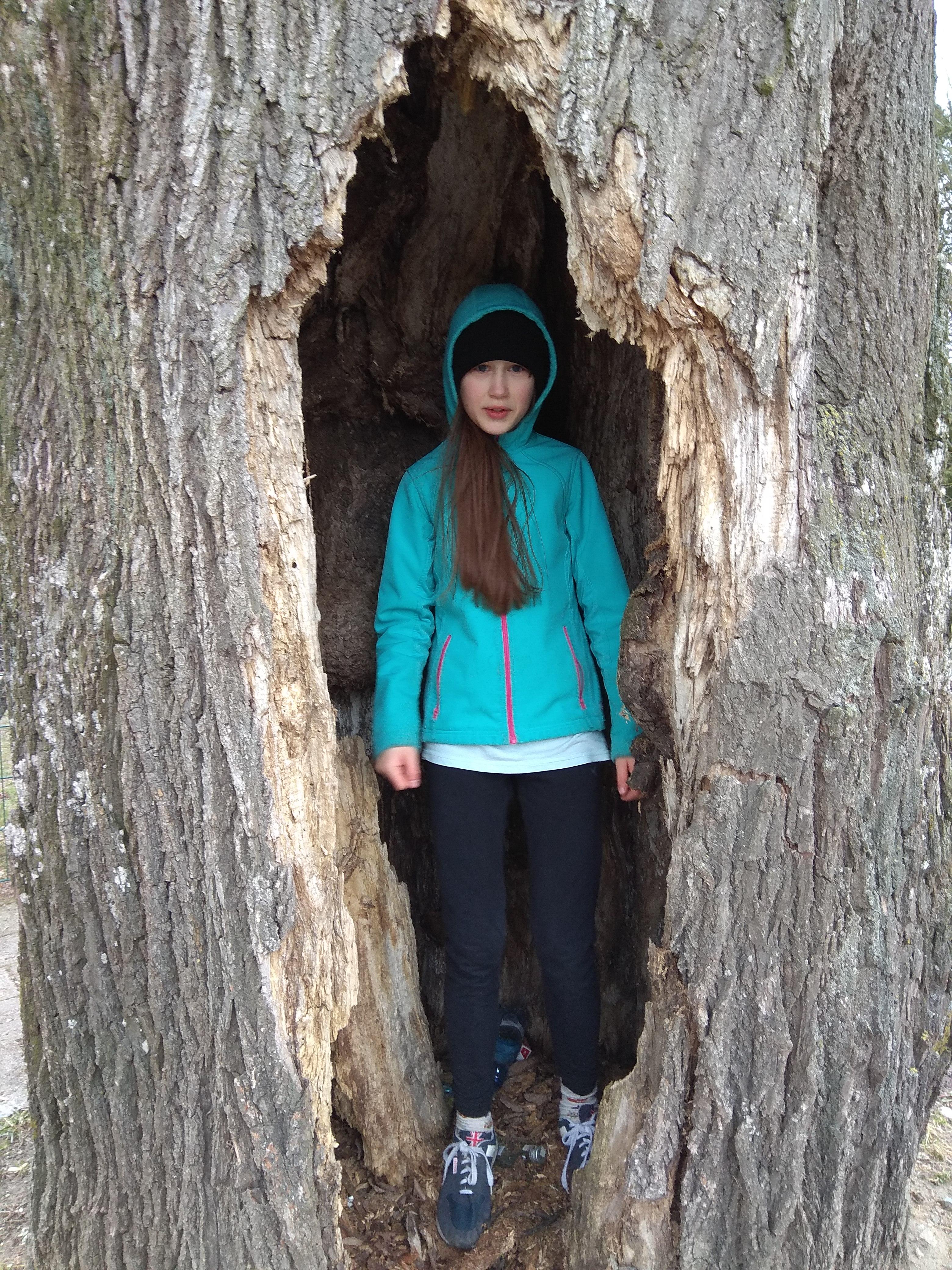 Pień drzewa z dziuplą, w której stoi dziewczynka z długimi, brązowymi włosami,  ubrana  w niebieską bluzę z kapturem nałożonym na głowę.
