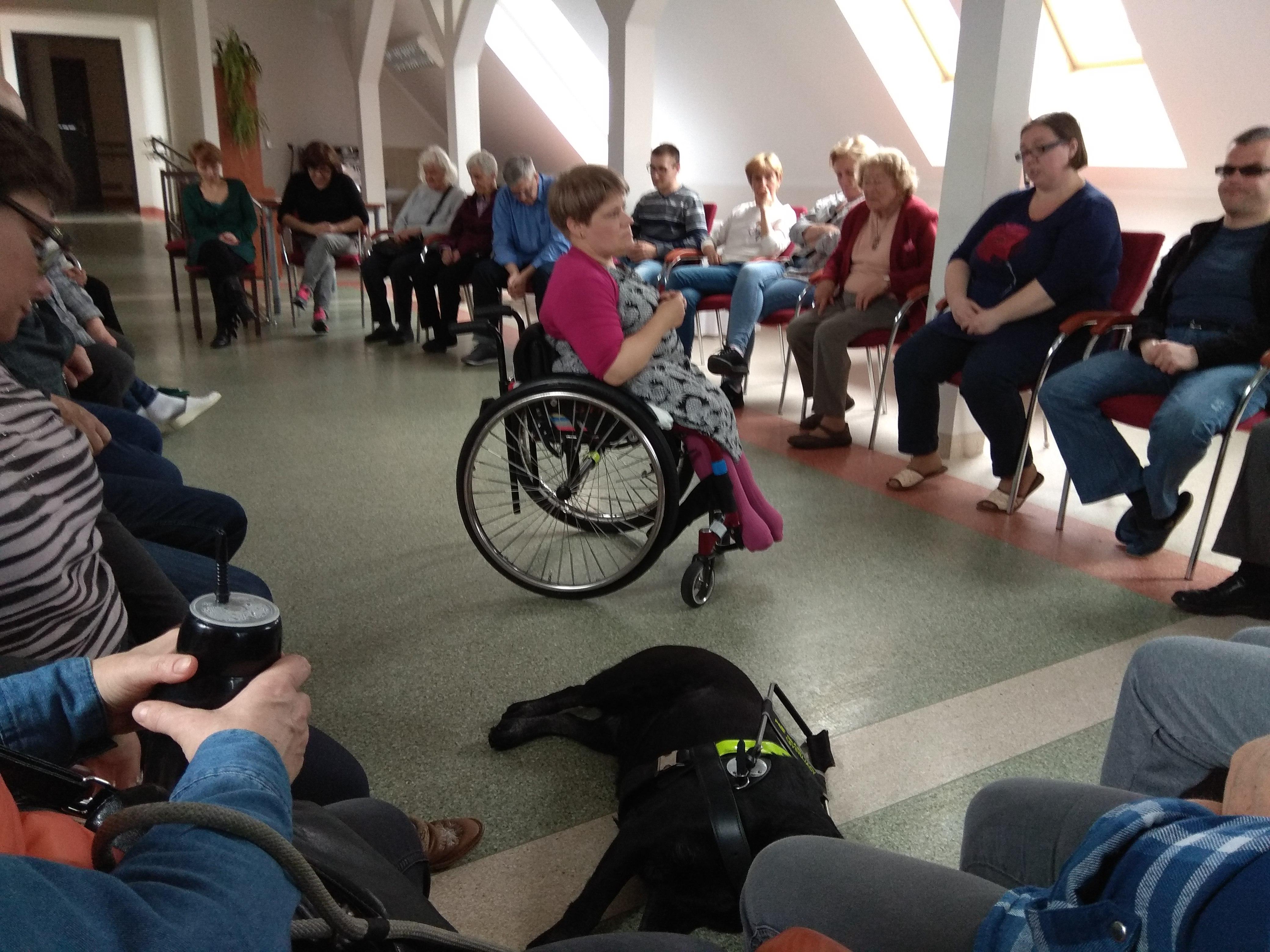 Zjazdowicze siedzący w widnej sali na krzesłach ustawionych po owalu. Po środku w różowej bluzce, na wózku inwalidzkim siedzi trenerka – psycholog i doradca zawodowy. Na podłodze leży czarny labrador – pies przewodnik.
