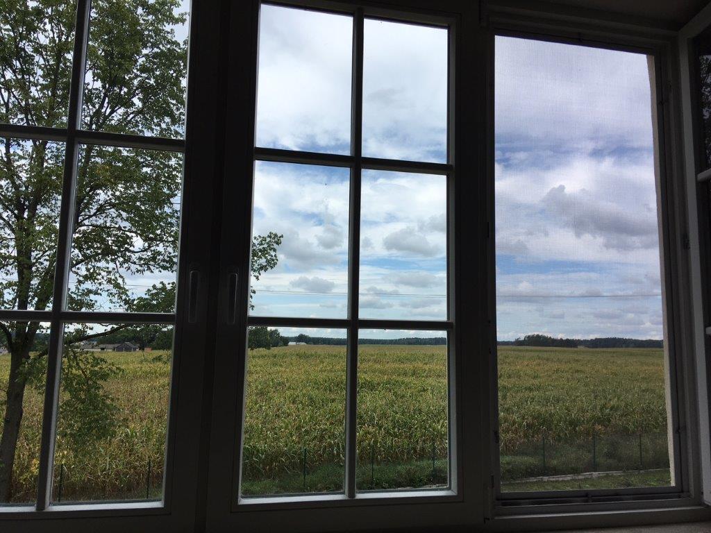 Duże okno z widokiem na łąkę podlaską z jednej ze stron ośrodka